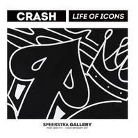 Crash%20life%201