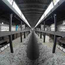 Limpressionnant-original-artiste-berlin-nicolas-bamert-2-